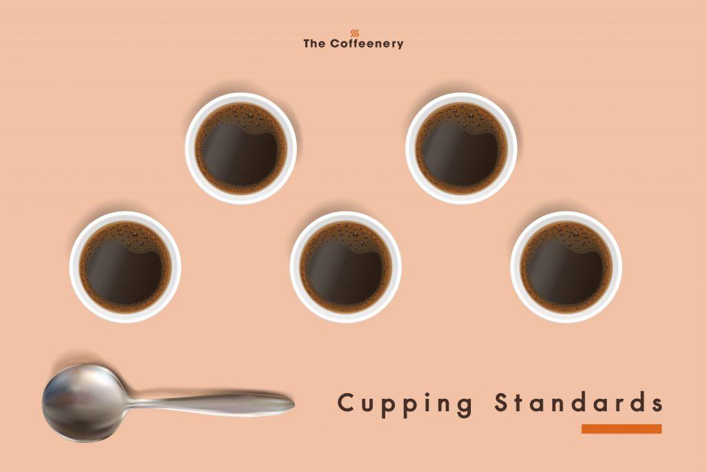 Cupping Standard มาตรฐานคัปปิ้ง